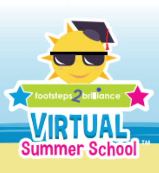 Virtual Summer School Icon